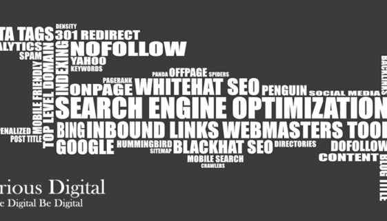 On Page seo - victorious digital